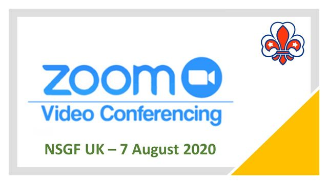 zoom picture uk 2020
